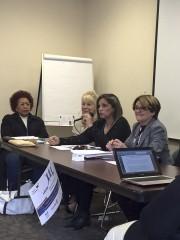 Panel CSW 2015 RF 1